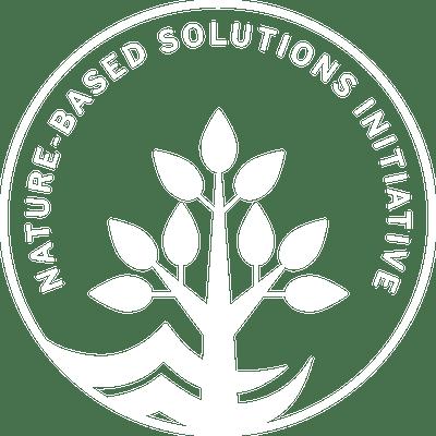 White NbSI logo
